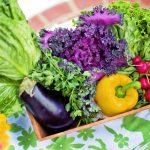 Quels sont les bénéfices d'une alimentation végétarienne?